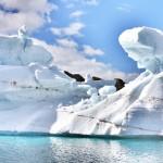 Severní polární kruh.