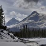 7. Aljaška.