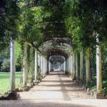 7. Botanické zahrady, Rio de Janeiro.